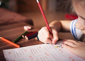 «Педагогическое образование: педагог дополнительного образования (по направленностям)»