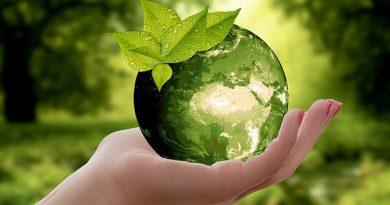 юный эколог
