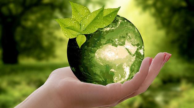 Конкурс экологических проектов