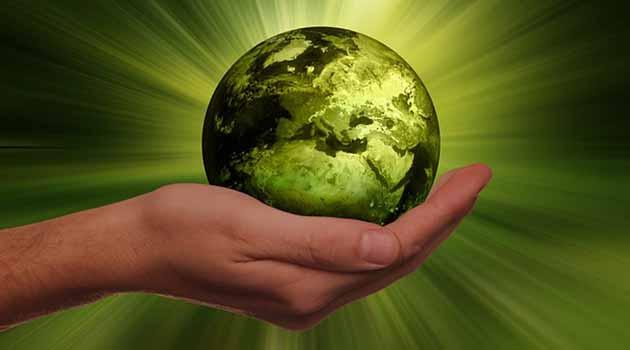 Бережём планету вместе