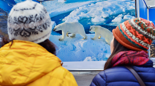 Большой Арктической Экспедиции