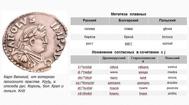 славянские языки